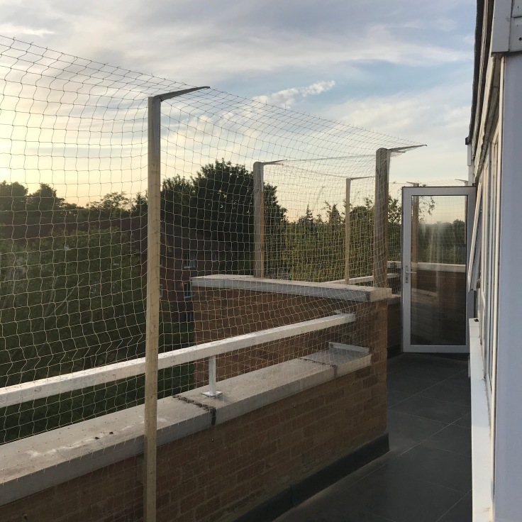 cat netting fitted to roof